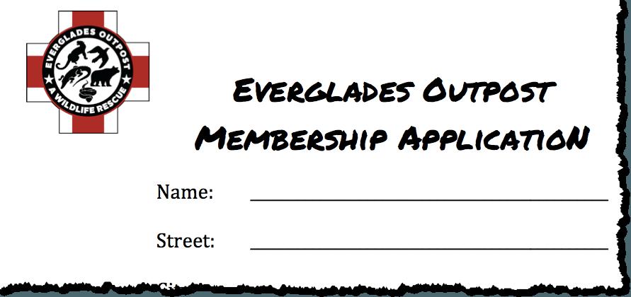 membership-snapshot
