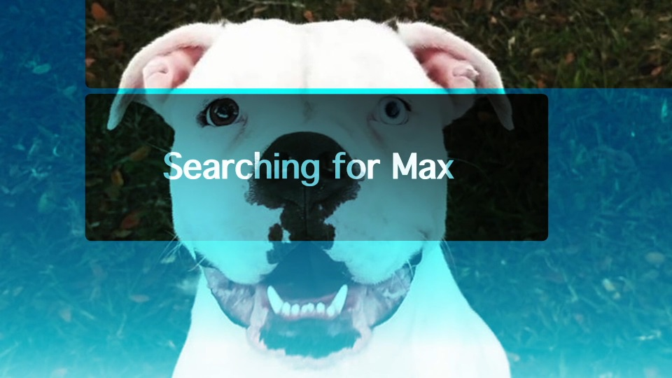 Searching for Max