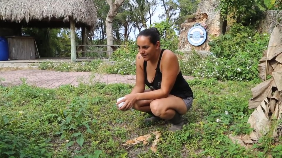 Releasing a snake at the Everglades Outpost